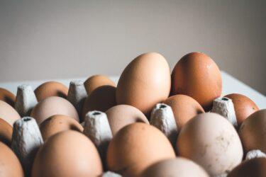 【アミノ酸スコア100】 卵はすごい‼