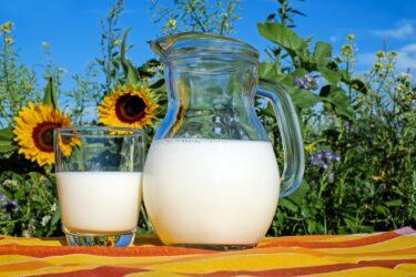 【カルシウムだけじゃない】栄養満点・乳製品のパワー